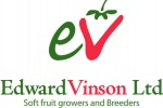EDWARD VINSON LIMITED
