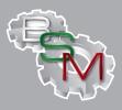 BSM LTD