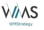 WM Strategy Ltd.