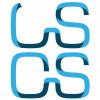 LS Consulting and Services Ltd.